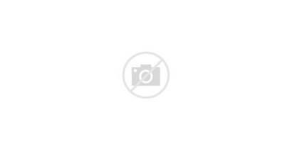 Slaughterhouse Should Visit Cow
