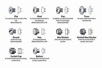 Identification Bolt Washer Bolts Types Nut Head