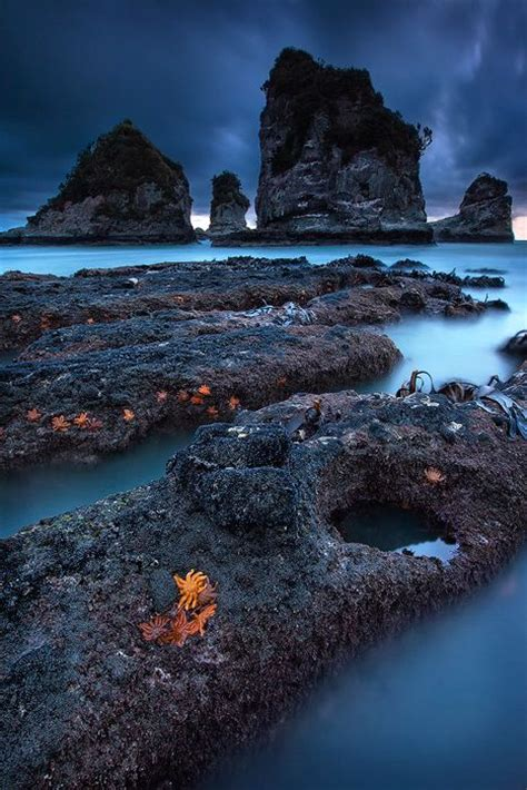 West Coast South Island New Zealand Nature Ii