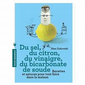 La Maison Du Bicarbonate : du sel du citron du vinaigre du bicarbonate de soude 250 recettes naturelles pour la maison ~ Melissatoandfro.com Idées de Décoration