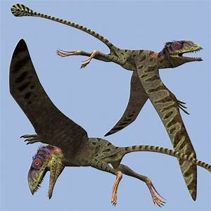 3506 best dinosaurs and prehistoric beasties images on ...