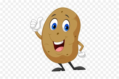 royalty  potato stock photography potato clipart png