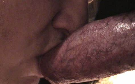 Secretly Banged With An Obedient Dog Wifes & Dog Party Stretched