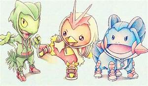 Pokemon Generation 3 Starters Playmat Duel Kingdom
