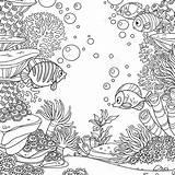 Algae Spon Corals Shareasale Anemones sketch template