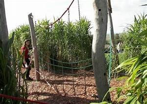 Klettergerüst Selber Bauen : bambushain im garten anlegen beispiel spielplatzgestaltung mit riesengras ~ Sanjose-hotels-ca.com Haus und Dekorationen
