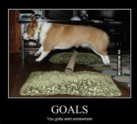Goals Meme - 5 tips to meeting goals greenmellen media