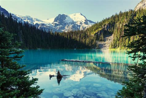 5 Whistler Trails to Explore This Spring   Western Living
