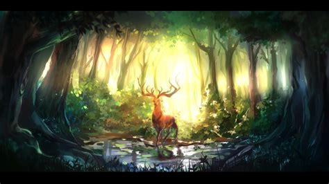 forest hd wallpaper background image  id