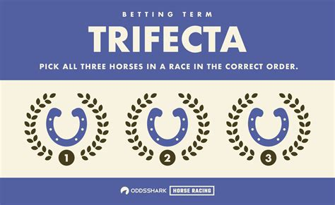 trifecta horse betting explained odds shark