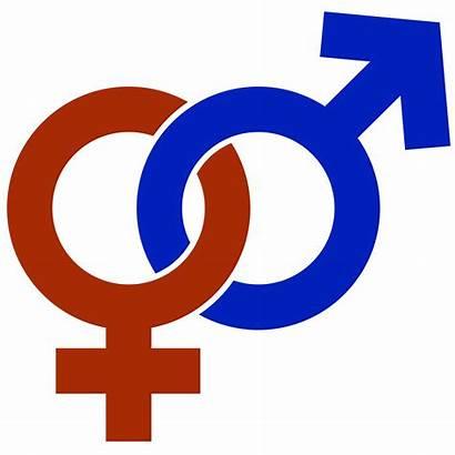 Gender Violence Based Team Task Universities Ministerial