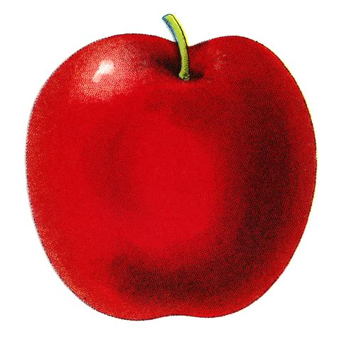 Free Cartoon Apple Pictures, Download Free Clip Art, Free ...