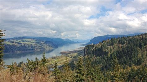 cruise showcases columbia river valley wines travel weekly
