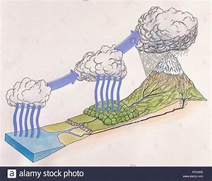 Water Cycle Diagram Stock Photos  U0026 Water Cycle Diagram Stock Images