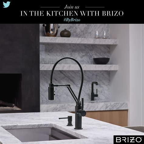 everything plus the kitchen sink everything plus the kitchen sink bybrizo 8889