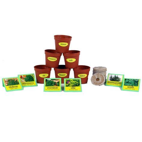 garden starter kit chef s herb garden seed starter kit chp102216 the home depot