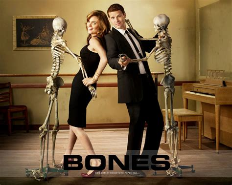 In this tv show collection we have 25 wallpapers. bones - Booth vs DiNozzo Wallpaper (21704315) - Fanpop