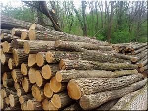 Piquet De Cloture Bois Acacia : ak c sz l t m sz l kar sz l oszlop planches d 39 acacia ~ Dailycaller-alerts.com Idées de Décoration