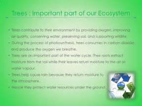 write an essay on water pollution in hindi % original a good argumentative essay