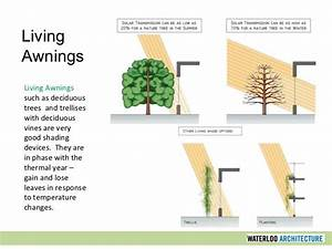 Living Awnings Such As Deciduous Trees And Trellises With