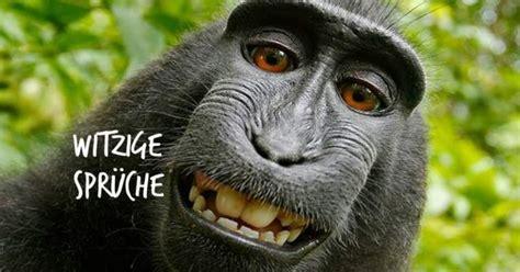 Lustige sprüche und wünsche sowie humorvolle reime und verse. Bildergalerie: Witzige Sprüche Bilder per WhatsApp senden ...