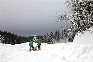 Sankt Andreasberg Rodelbahn : winter im harz rodeln entlang der h hnerbr he im odertal ~ Buech-reservation.com Haus und Dekorationen