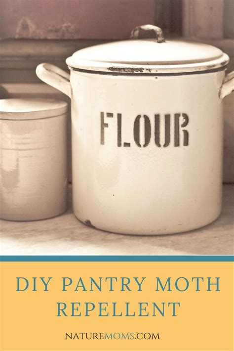 Getting Rid Of Pantry Moths Naturally Best 25 Moth Repellent Ideas On Moth