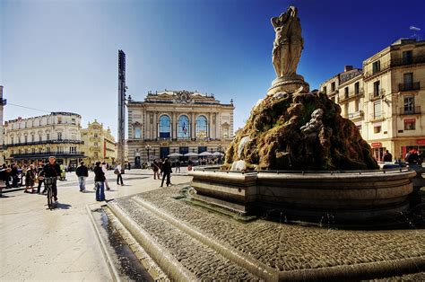 Montpellier Wikipedia