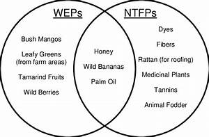Venn Diagram Comparing Examples Of Wild Edible Plants