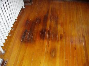 wood flooring repair refinishing services st paul mn With stains on hardwood floors from pets