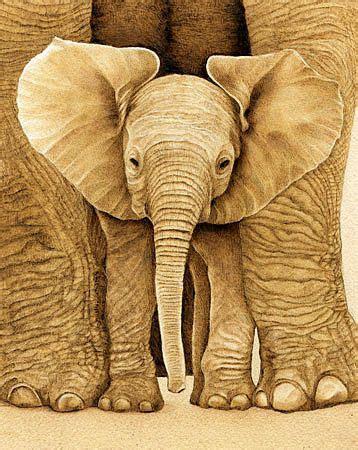 baby elephant  cate mccauley wood burning art