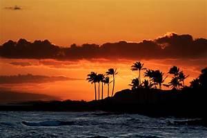 enjoy the waves tumblr- beach sunset   Beach/Ocean ...