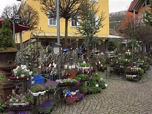 Mein Schöner Landgarten : gartentagebuch im april teil 1 seite 3 gartenfreunde mein sch ner garten online ~ Sanjose-hotels-ca.com Haus und Dekorationen