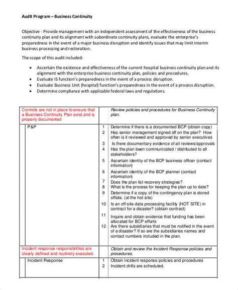 audit program samples templates   ms word