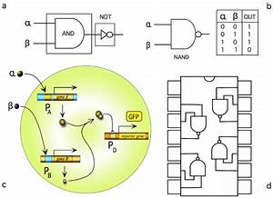Simple Logic Gates Can Be Implemented Out From Minimal Sets Of Logic
