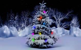snow covered christmas tree free wallpaper download download free snow covered christmas tree