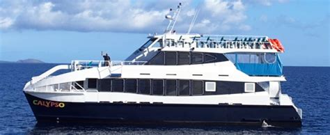 Catamaran Dinner Cruise Maui by Calypso Charters Maui Ma Alaea Dinner Cruise Hawaii