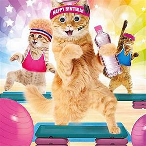 Funny Cats in Gym Keep Fit Birthday Card Work It Ladies 3D