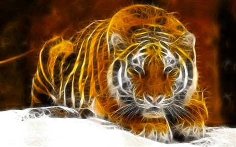 windows 7 digital tiger hd wallpaper hintergrund