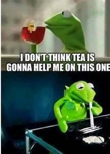 Kermit memes   Humor   Pinterest   Kermit, Memes and ...