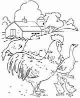 Farm Coloring Animal sketch template