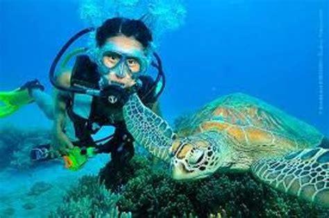 10 Interesting Marine Biologist Facts | My Interesting Facts