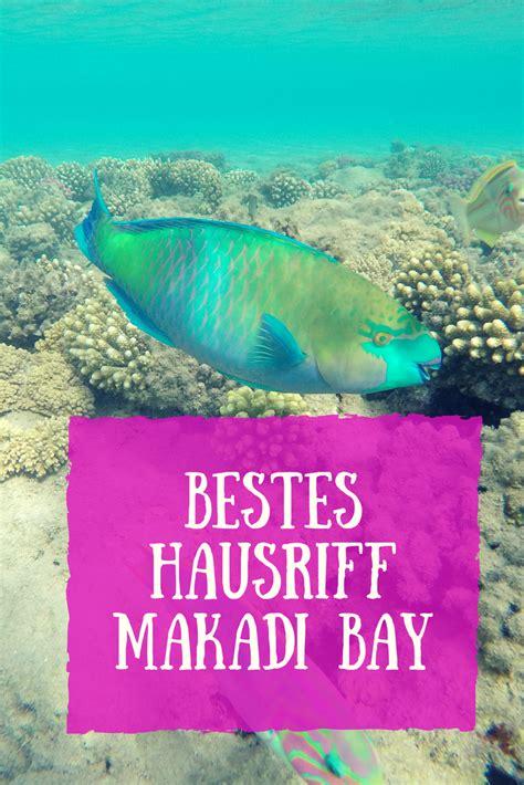 schnorcheln  hausriff fort arabesque makadi bay