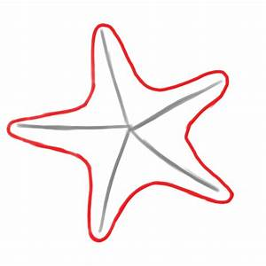 How to Draw a Starfish: 6 Steps (with Pictures) - wikiHow