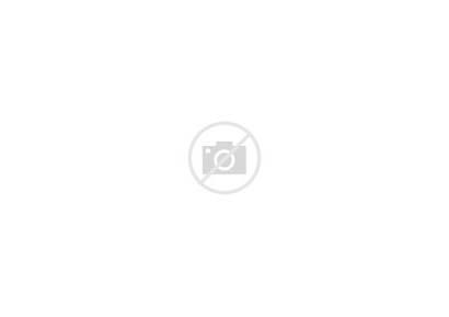 Morning America God Bless Butterfly Flag American