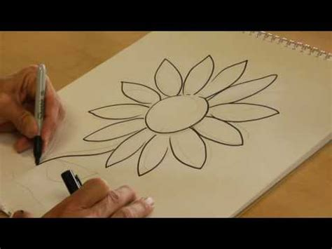 drawing  nature   draw  daisy youtube