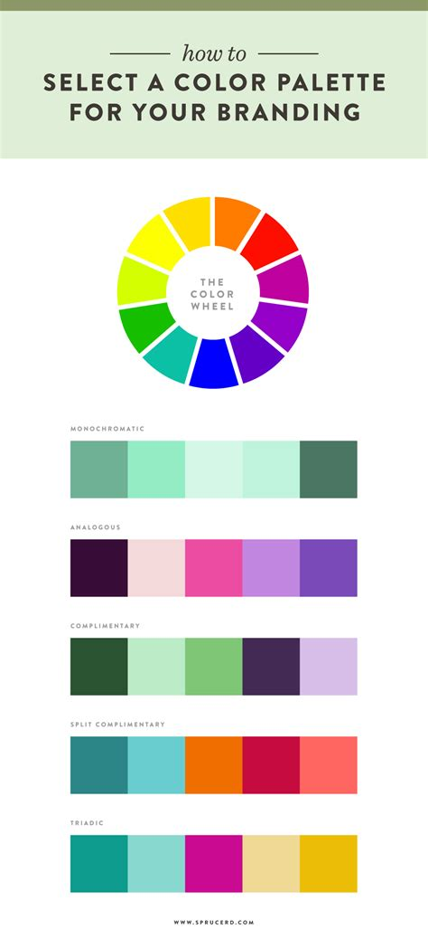 How To Select A Color Palette For Your Branding — Spruce Rd