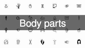 199 Körperteile icon pack   Download der kostenlosen Vektor
