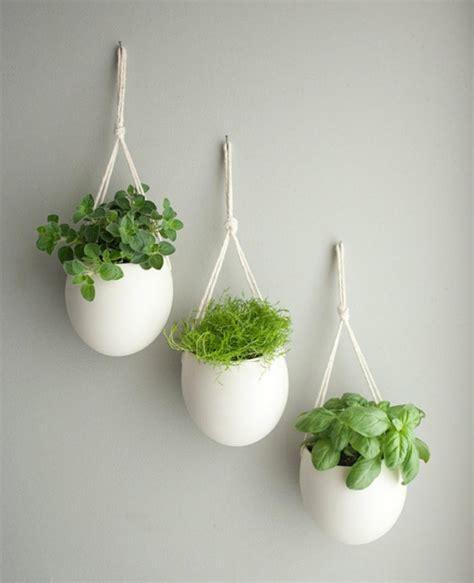 herbes aromatiques en cuisine mini jardinières et pots d intérieur aux herbes aromatiques