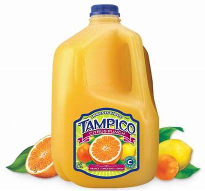 Tampico Juice Punch Drinks Kiwi Citrus Orange